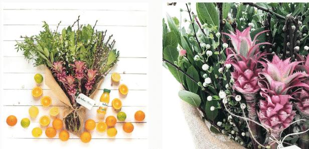 blooms tropicana