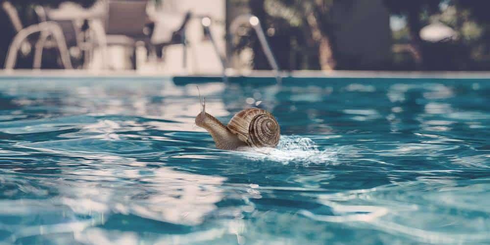 Je reviens du futur, la bave d'escargot rend beau/belle !