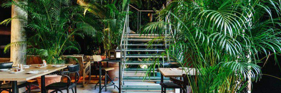 Direction « Après » : le restaurant «Jungle» du Kube hôtel Paris