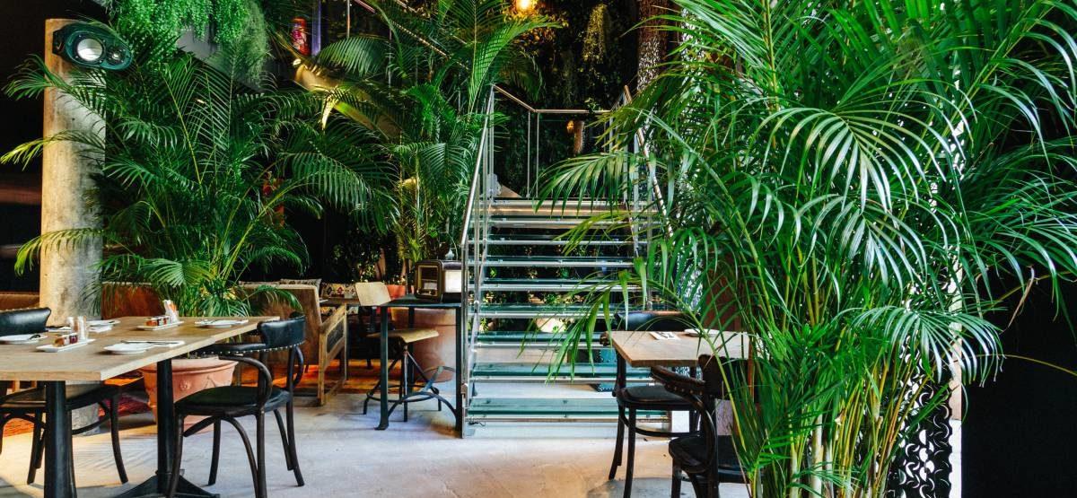 """Direction « Après » : le restaurant """"Jungle"""" du Kube hôtel Paris"""